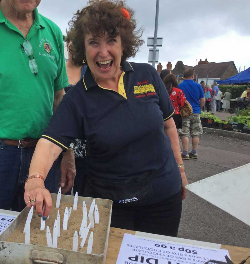 A photo of the Lions stall at Lydney Hospital Fete 2017