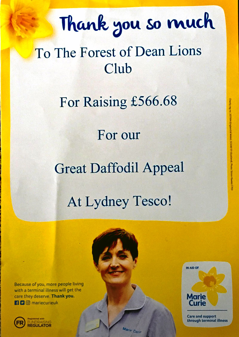 Marie Curie collection 2018 at Tesco Lydney