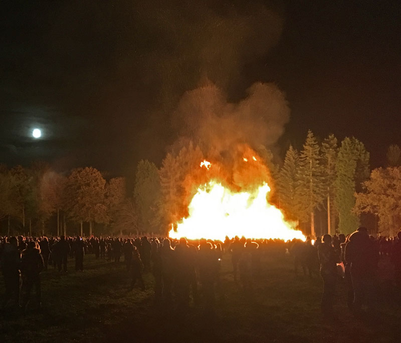The Lions Speech House Bonfire 2017